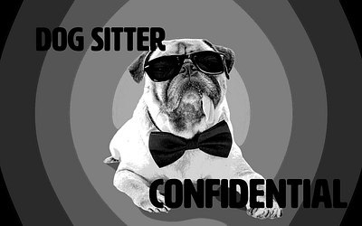DC Dog Sitter Confidential