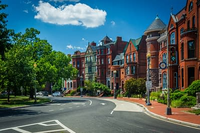 puppy-love-pet-sitters-dog-sitting-dc-row-houses-red-logan-circle